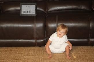 11 months - 1