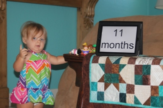 11 months - 2