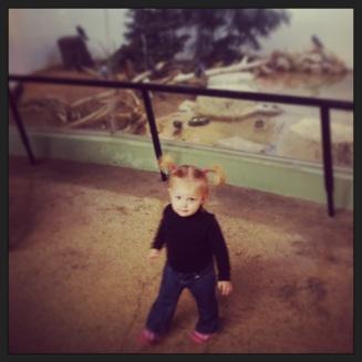 Landri loved the birds!