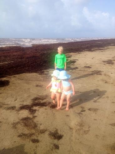 Beach Buds 2