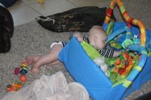Destructive Baby