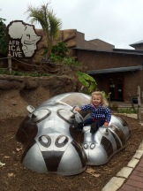 Hippo!