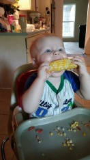 First Corn on the Cob!