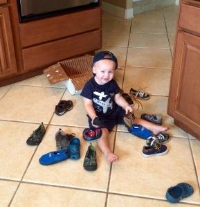 Rex LOVES shoes!