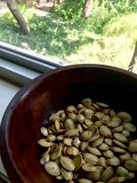 Roasted Pumpkin Seeds 1