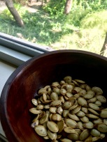 Roasted Pumpkin Seeds 1