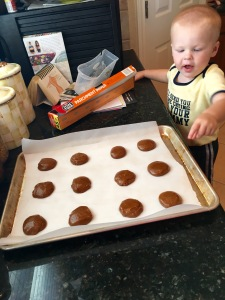 Gingersnap Dough