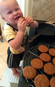 Gingersnaps with Rex!