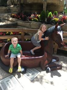 At the Gaylord Texan Resort
